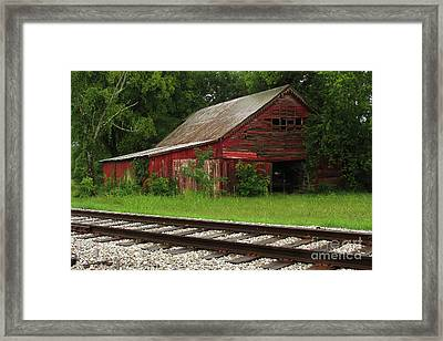On A Tennessee Back Road Framed Print