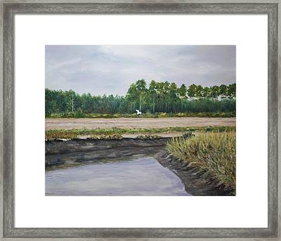 On A Tidal Creek Framed Print