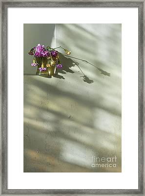On A Wall Framed Print by Svetlana Sewell