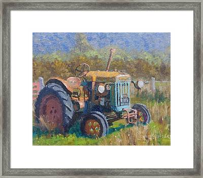 On A Westland Farm  Framed Print by Terry Perham