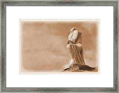 Framed Print featuring the photograph On Bended Knee by Nadalyn Larsen