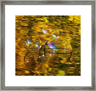 On Golden Lake Framed Print by Terry Cosgrave