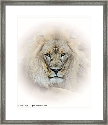Framed Print featuring the mixed media On Guard Duty by Elaine Malott