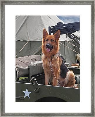On Guard Duty Framed Print