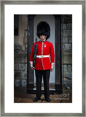 On Guard Framed Print by Inge Johnsson