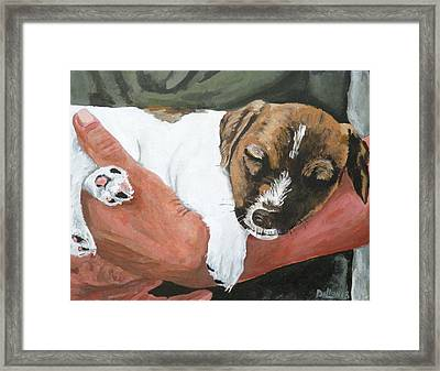 On Guard Framed Print by Michael Dillon