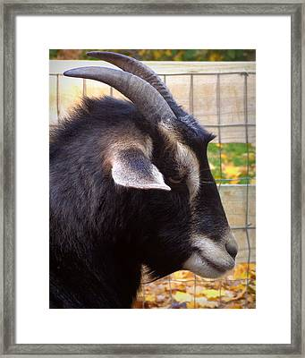 On My Break Framed Print by Joseph Skompski