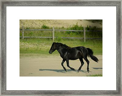 On My Way Framed Print by Tracy Winter