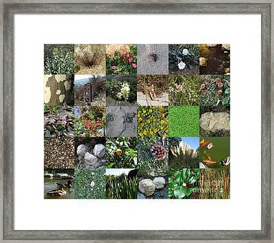 On Nature's Trail Framed Print by Bedros Awak