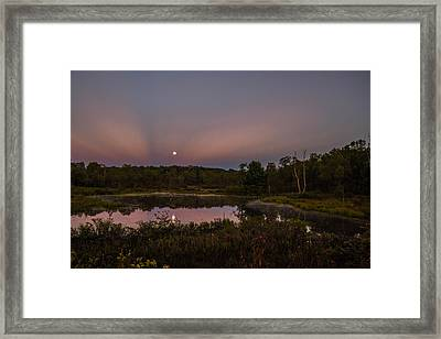 On Our Moonlight Drive Framed Print