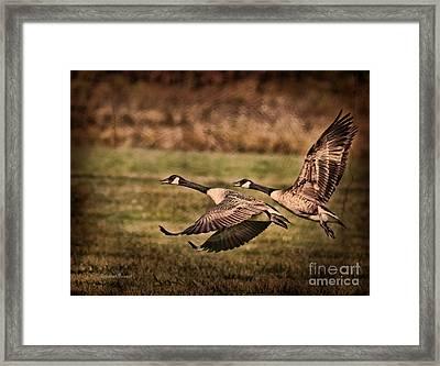 On Takeoff Framed Print by Deborah Benoit