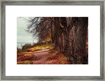 On The Bank Of River Volga Framed Print by Jenny Rainbow