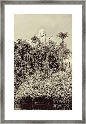On The Banks Of The Nile Framed Print by Nigel Fletcher-Jones