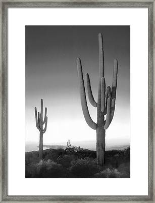 On The Border Framed Print by Mike McGlothlen