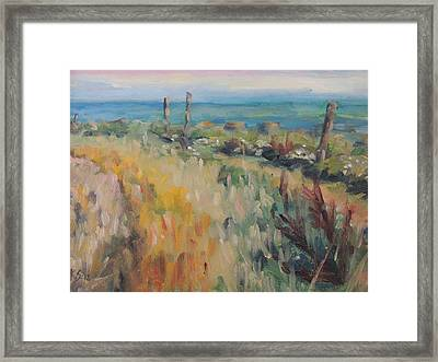 On The Coastal Path Framed Print