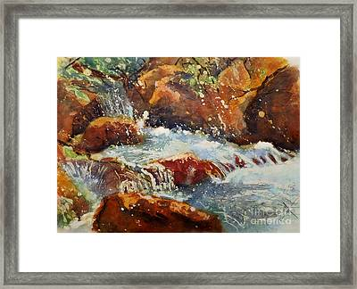 On The Colorado Trail Framed Print