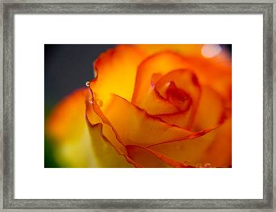 On The Edge Framed Print by Kim Lagerhem