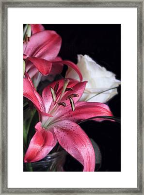 On The Edge Framed Print by Linda Phelps