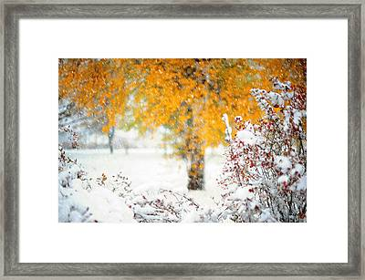 On The Edge Of Autumn Framed Print by Jenny Rainbow