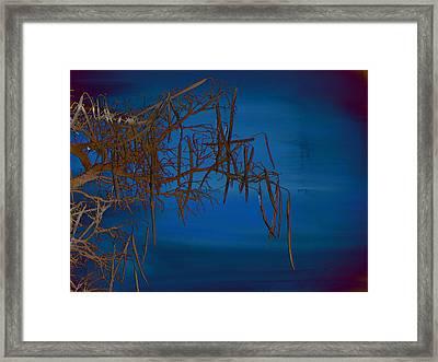 On The Edge Of Sky Framed Print by Lenore Senior