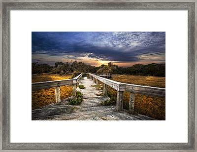 On The Edge Of The Marsh Framed Print