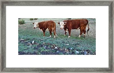 On The Farm Framed Print by Dan Sproul