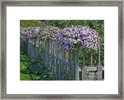 On The Fence Framed Print by Ann Horn