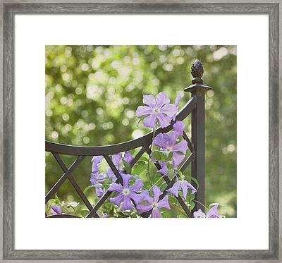 On The Fence Framed Print by Kim Hojnacki