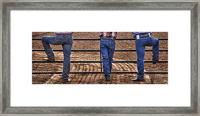 On The Fence Framed Print by Priscilla Burgers