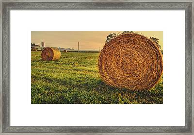 On The Field  Framed Print