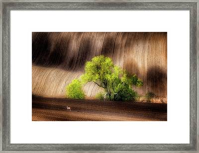 On The Fields Framed Print