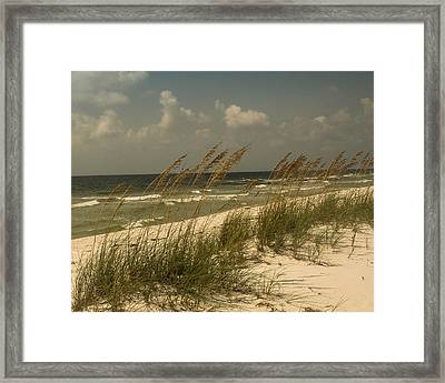 On The Gulf Framed Print