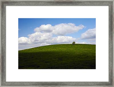 On The Hill Framed Print