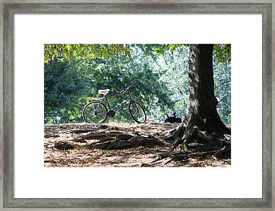 On The Hill Framed Print by Mohammed  Yusuf