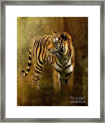 On The Hunt Framed Print by Betty LaRue
