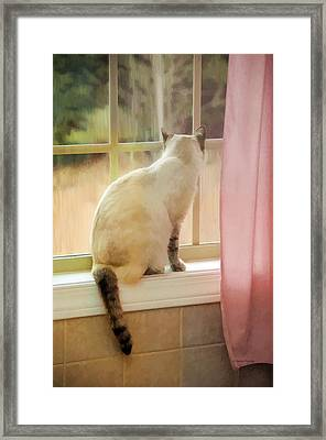 On The Inside Looking Out Framed Print by Kenny Francis