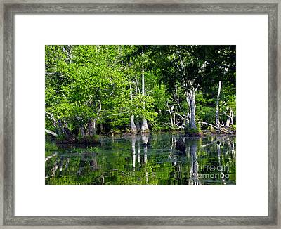 Framed Print featuring the photograph On The Lake by Ken Frischkorn
