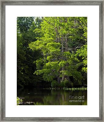 Framed Print featuring the photograph On The Lake Two by Ken Frischkorn