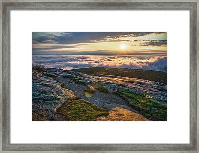 On The Mountain Framed Print