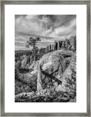 On The Needles Highway 2 Bw Framed Print