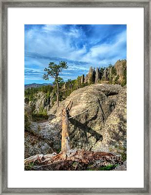 On The Needles Highway 2 Framed Print