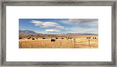 On The Open Lands Framed Print