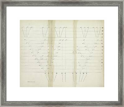 'on The Origin Of Species' (1859) Framed Print