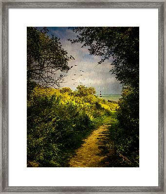 On The Path To The Sea Framed Print by Chris Lord