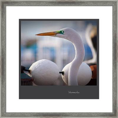 On The Pier Framed Print
