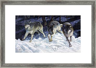 On The Prowl Framed Print by Gregory Perillo