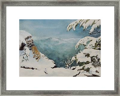 On The Prowl Sold Framed Print
