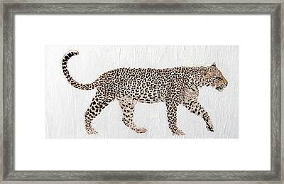 On The Prowl Framed Print by Stephanie Grant