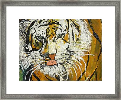 On The Prowl Zoom Framed Print