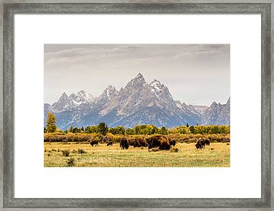On The Range Framed Print